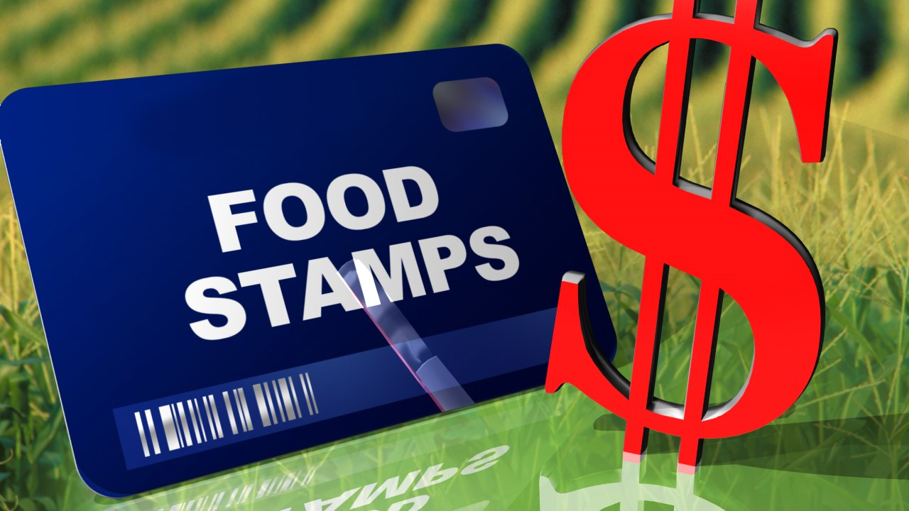 Food Stamp News Stories
