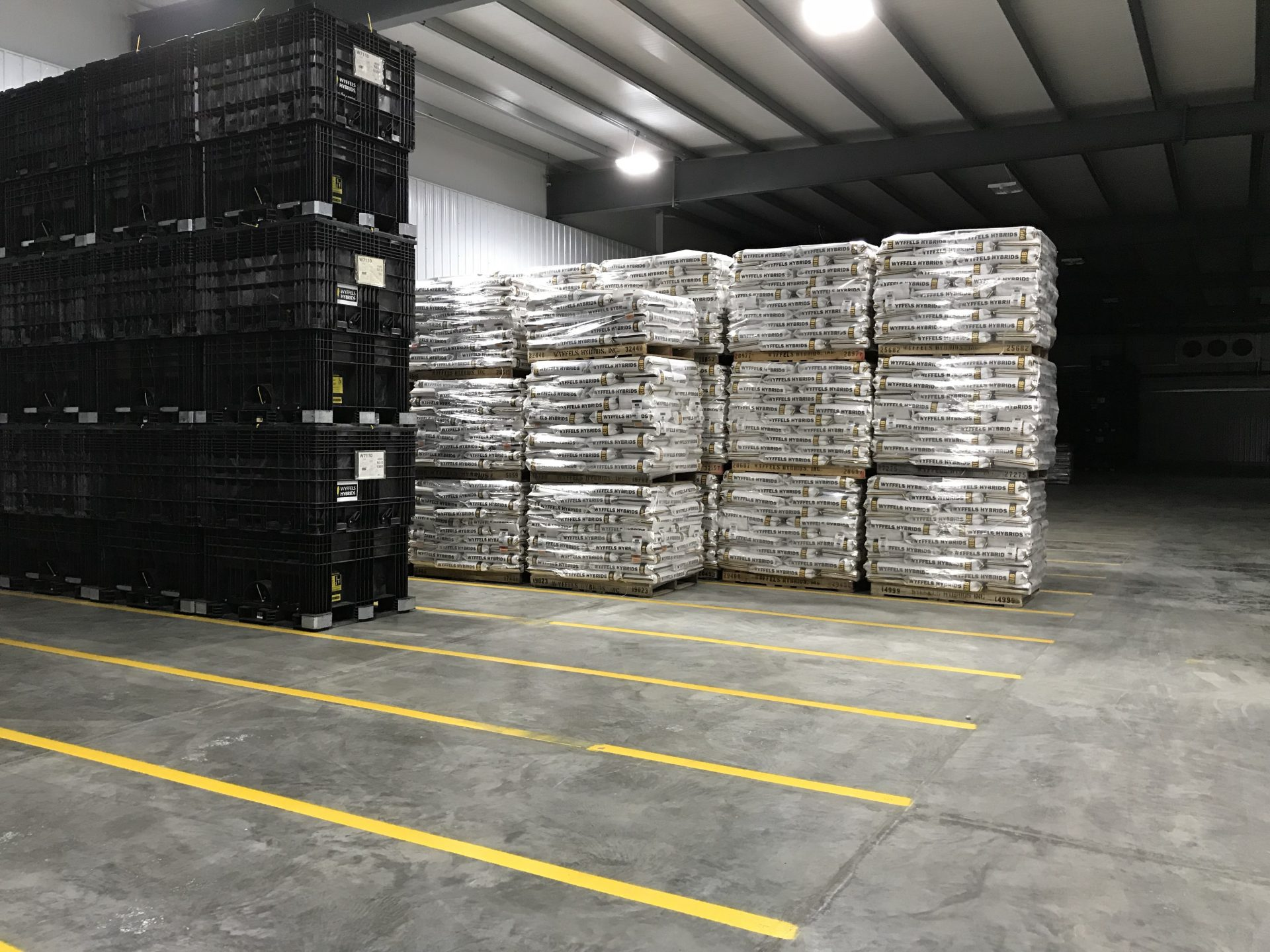 Wyffels Hybrids – New Cold Storage Facility | Iowa